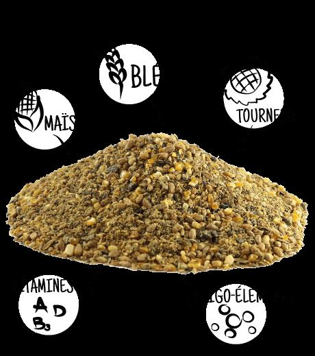 Aliment complet poule pondeuse farine picorette for Duree de ponte d une poule pondeuse